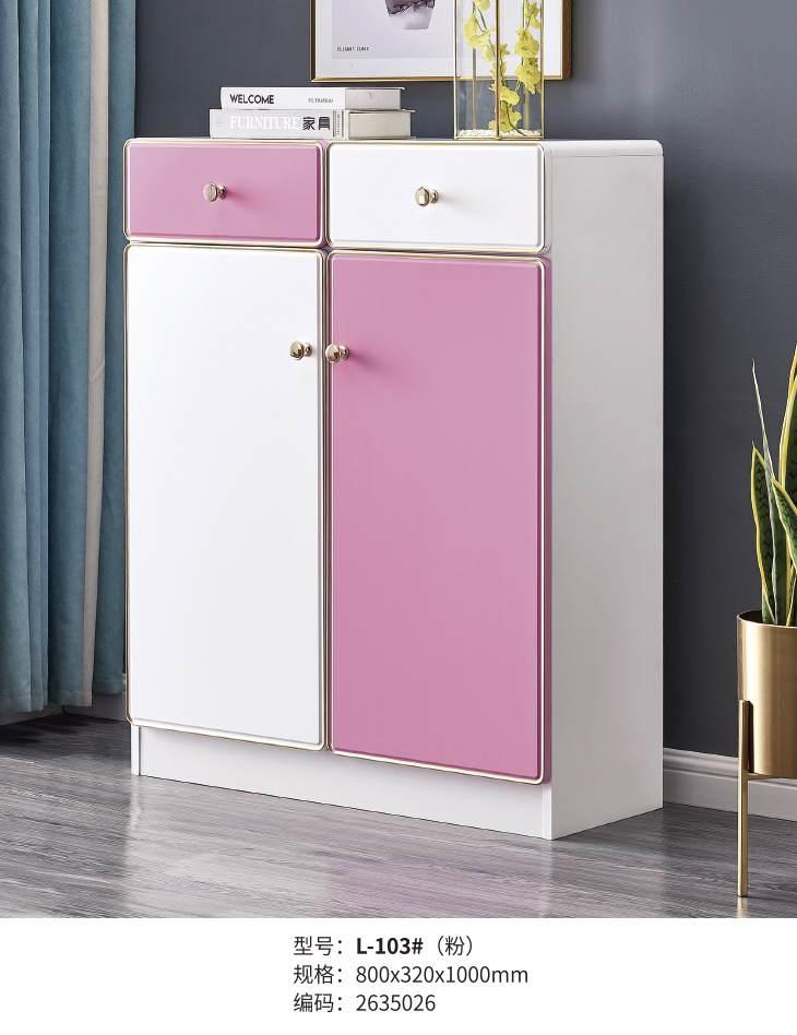 落地式矮柜子储物柜工具柜简单办工隔断柜办公室多门柜时尚学生